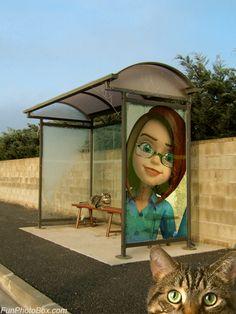 Photo montage photo sur abri de bus #photomontage #sitepourfairedesphotosmontages