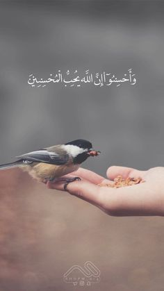 Surah Al-Baqarah ~ And do good; indeed, Allah loves the doers of good. Quran Quotes Love, Quran Quotes Inspirational, Beautiful Islamic Quotes, Allah Quotes, Beautiful Arabic Words, Hadith Quotes, Beautiful Prayers, Best Islamic Quotes, Muslim Quotes