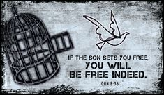 Jonathan=If the Son sets you free, you will be free indeed. Scripture Cards, Bible Verses, Scriptures, Sermon Illustrations, Free Indeed, Freedom In Christ, John 8, Faith Walk, Online Greeting Cards