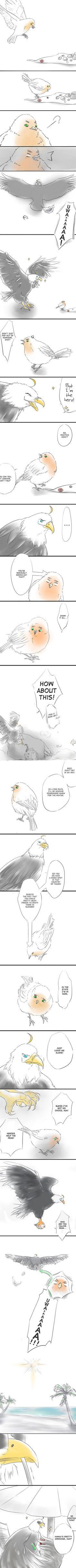 Hetalia- Bird! England and USA. XD