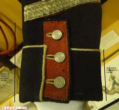 Parement habit 23e léger Empire, Napoleonic Wars, Image Sharing, 3 D, Collections, French, Soldiers, Fashion History, Guns