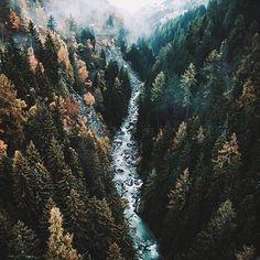Photo by @hannes becker - Location: Bellwald, Switzerland #thetrickytree