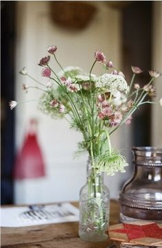 queen anne's lace and ? Table Flowers, Cut Flowers, Fresh Flowers, Wild Flowers, Beautiful Flowers, Fresco, Deco Nature, Queen Annes Lace, Nature Aesthetic