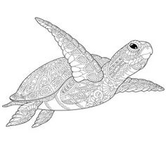 Stylized underwater turtle (tortoise). Freehand sketch for adult anti stress coloring book page with doodle and zentangle elements.