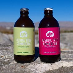 """373 Likes, 10 Comments - Kombucha Hunter (@kombuchahunter) on Instagram: """"Quenching our thirst for booch in the desert with Joshua Tree Kombucha.  Like the desert, this…"""""""