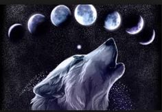Love the wolf with the moon phases.