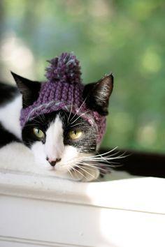 Crochet Cat Hat