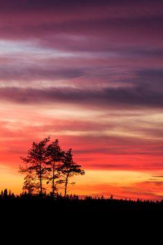 Watching the sunset by JuhaniViitanen.deviantart.com on @DeviantArt