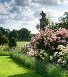 Exuberant borders of hybrid musk roses, edged in lavender, lead into the walled garden at Helmingham Hall, Suffolk England