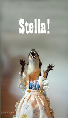 seinfeld: Stella Squirrel