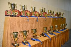 Sanda World Title Belts and Grand Champion Cups from the 2014 International Chinese Martial Arts Championship in Orlando, Florida. www.kungfuchampionship.com