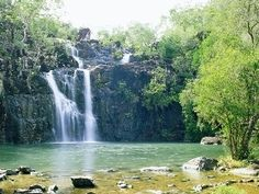 Cedar Creek Falls (Airlie Beach / Prosperine) was just about to go visit these falls in dec 13 but we got busy doing other activities in great barrier reef - will go some day in the future