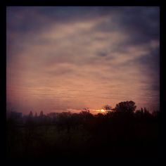 Morning Brockley
