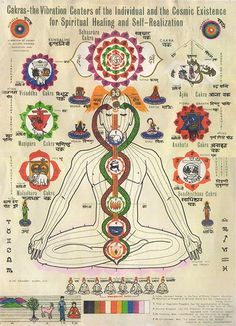 Chakra poster by Sri Rammurti Mishra, M.D., depicting chakras & three main nadis.