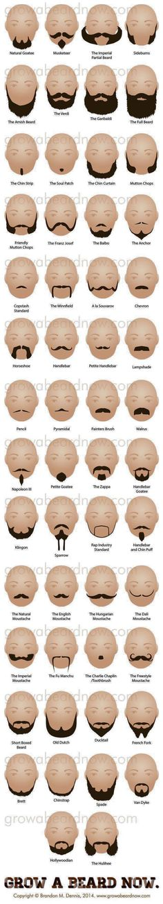 Beard and mustache names