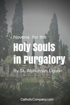 Novena for the Holy Souls: The souls in purgatory cannot pray for themselves, they cannot do anything to hasten their entrance into heaven. But we can pray for them. Catholic Prayers, Catholic Beliefs, Novena Prayers, Christianity, Catholic Catechism, Jesus Prayer, Faith Prayer, Prayer Book, Purgatory Prayer