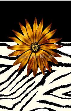 Animal Print Zebra Pattern:/saundramylesart
