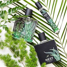 """A member of the fougère (""""fern-like"""") fragrance family, NEST Fragrances Verde uses Himalayan cedar and vetiver to create a fresh, crisp scent that smells likes you just ran barefoot through a dense forest, except better because you don't have any pine needles stuck in your toes."""