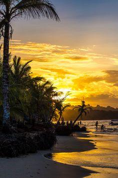 ღღ Golden sunset at Manzanillo, Costa Rica (photo by David Charpentier) Costa Rica, Sky Landscape, Sunset Pictures, Ocean Life, Beautiful Beaches, Beautiful Landscapes, Beautiful World, Places To See, Nature