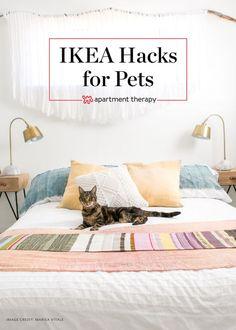 61 ideas cat furniture diy ikea apartment therapy for 2019 Cat Apartment, Apartment Hacks, Apartment Furniture, Cat Furniture, Apartment Living, Apartment Therapy, Furniture Stores, Stockholm Apartment, Dream Apartment
