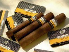 Cohiba Maduro 5 Cigars
