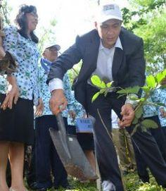 1 Billion Tree Planting Movement