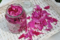 http://strawberriescreamlife.blogspot.ie/