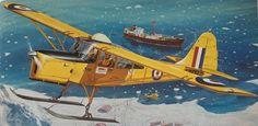 Roy Cross - Auster Antartic