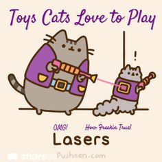 Toys Cats Love to Play / OMG!           How Freakin True!