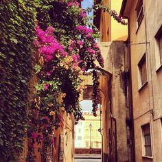 #Pisa #nascosta, angoli di una città poco conosciuta