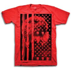 Men's USA Flag Eagle Graphic Tee