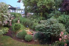 HermiP: Juli 2019 Terrace, Plants, Lawn And Garden, Seasons Of The Year, Balcony, Patio, Plant, Decks, Outdoor Cafe