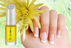 Šifra:31033 -The ONE regenerator za nokte Želite da oporavite nokte umornog izgleda?Po potrebi nanesite ovo ulje bogato vitaminima. *Veoma hranljivo,sa antioksidantima i esencijalnim uljima.