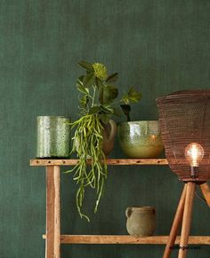 Wallpowers met prachtige schermbloemen, een lommerrijk bospad, een oneindige lucht en zee en stoer verweerd canvas.