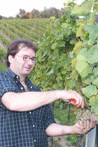 www.weingut-walter-wien.at - Spitzenweine aus Wien Vienna