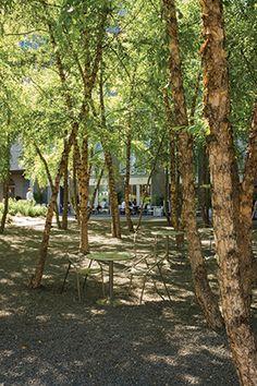 Village of Yorkville Park - Ken Smith Landscape Architect and Schwartz Smith Meyer Landscape Architects - Ontario, Canada