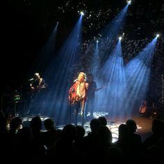 24 november 2017 - Albert Hammond concert in Mezz Breda. Albert Hammond, Concert, November, November Born, Concerts