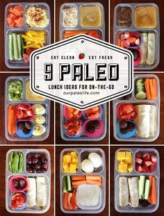 Bestselling Paleo Recipe Book http://www.healthyoptins.com/ 9 Quick & Easy Paleo Lunch Ideas - perfect for kids and adults, packed with protein, veggies, and a healthy treat. Paleo Living for a Healthier New You.