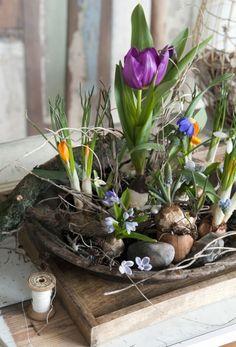 Forår på fad