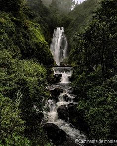 La Cascada de Peguche Otavalo.  #ecuador #allyouneedisecuador #waterfall #cascada #water #nature #naturaleza #natureaddict #naturelovers #intothewild #forest #tree #bosque #thoreau #landscapephotography #landscape  #photooftheday #peguche #otavalo by caminante.de.montes