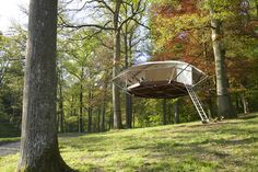 Dom'Up Treehouse | iGNANT.de