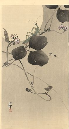 ~ Ohara Koson - Praying mantis - woodblock print