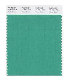 PANTONE SMART 16-5924X Color Swatch Card, Winter Green Pantone http://www.amazon.com/dp/B004O79ZQA/ref=cm_sw_r_pi_dp_fKSbwb1XS8773