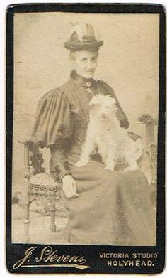 OLD CDV LADY & PET LAP DOG ON LAP STEVENS STUDIO HOLYHEAD WALES ANTIQUE C.1880