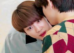 Bts Bangtan Boy, Bts Taehyung, Seokjin, Bts Twt, Park Jimin Cute, Bts Maknae Line, Bts Reactions, Bts Concert, Fake Love
