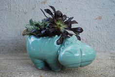 Keramik Übertopf Minze Nilpferd saftigen Pflanzer von claylicious