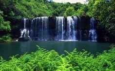 Tropical Rainforest Waterfalls | Kauai Waterfalls