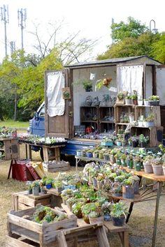 Succulents at a Japanese market Flower Truck, Flower Cart, Farmers Market Display, Fete Ideas, Succulent Wall Art, Greenhouse Plants, Japanese Market, Market Stalls, Farm Stand