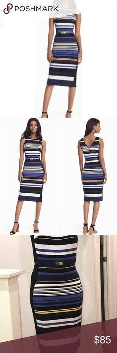 bba7521653003 White House Black Market Stripe Sheath Dress Sz 14 We're seeing all the  right
