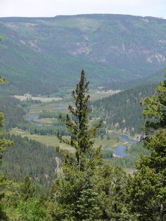 Southwest Colorado  http://blog.amysacksteder.com/